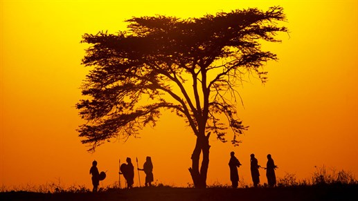 africa-hunters-sunrise.jpg