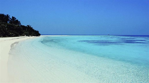 maldives-shore.jpg