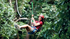 qsd-zip-wire-daintree.jpg