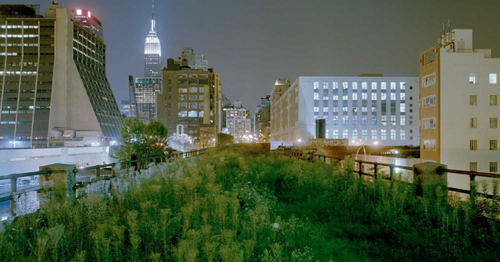 The High Line Walk, New York City