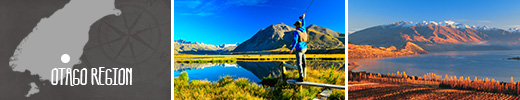 Experience the Otago Region on the South Island