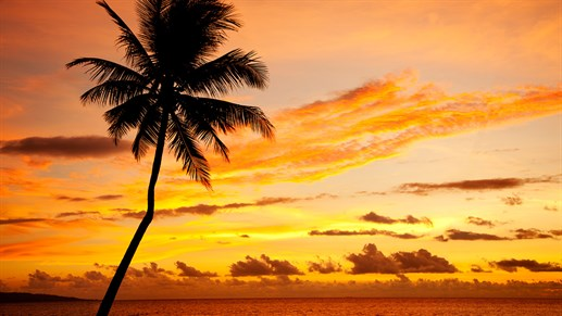 8 best things to do in Fiji: Watch the sunset